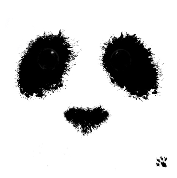 Yeux de panda