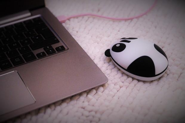 Panda souris ordinateur