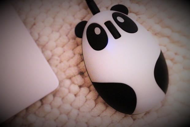 Souris Panda Wish